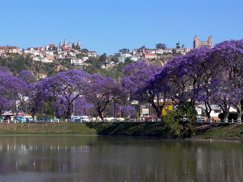 lake anosy Antananarivo